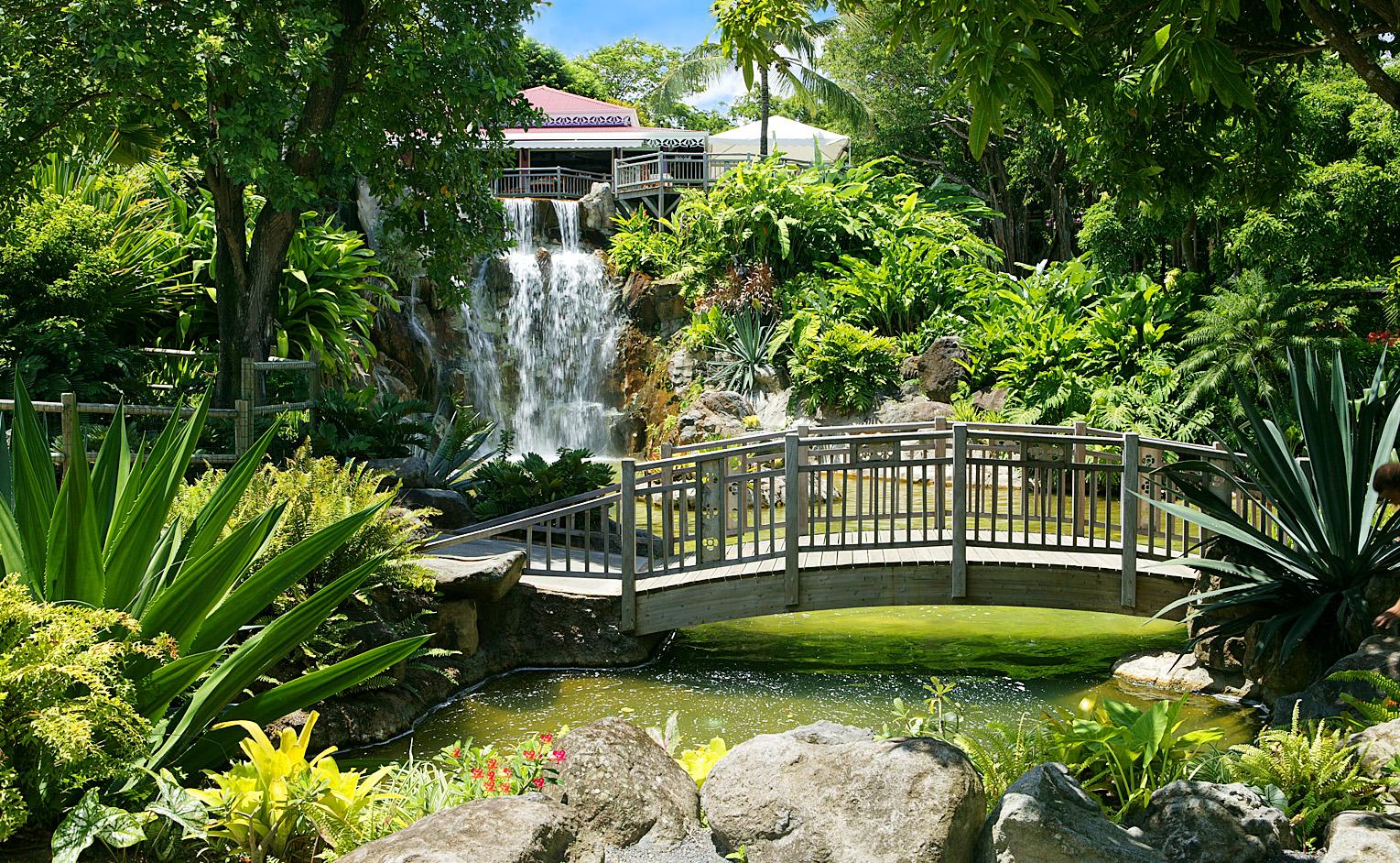 Le Jardin Botanique à Deshaies