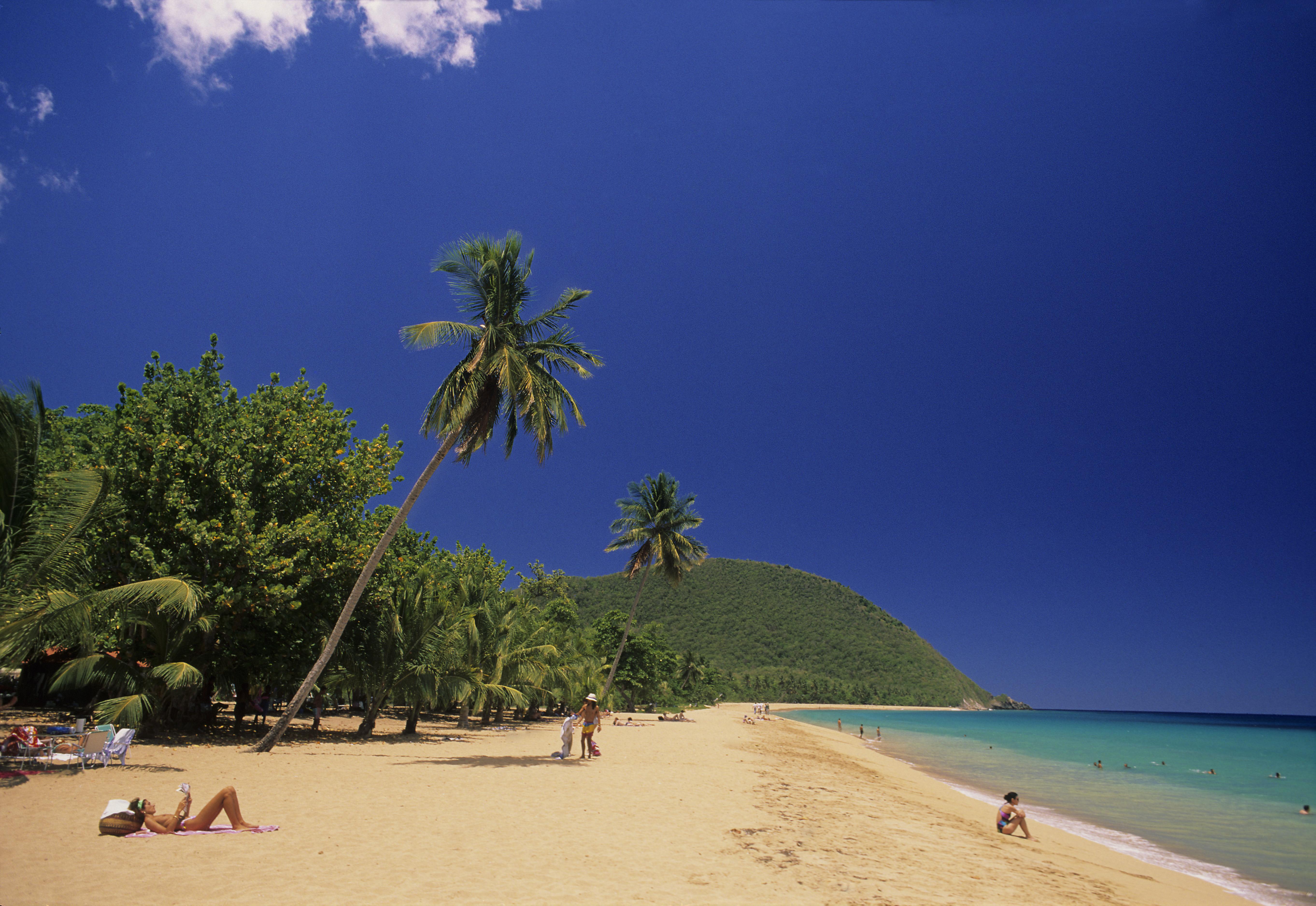 Plage de Grande Anse - Deshaie
